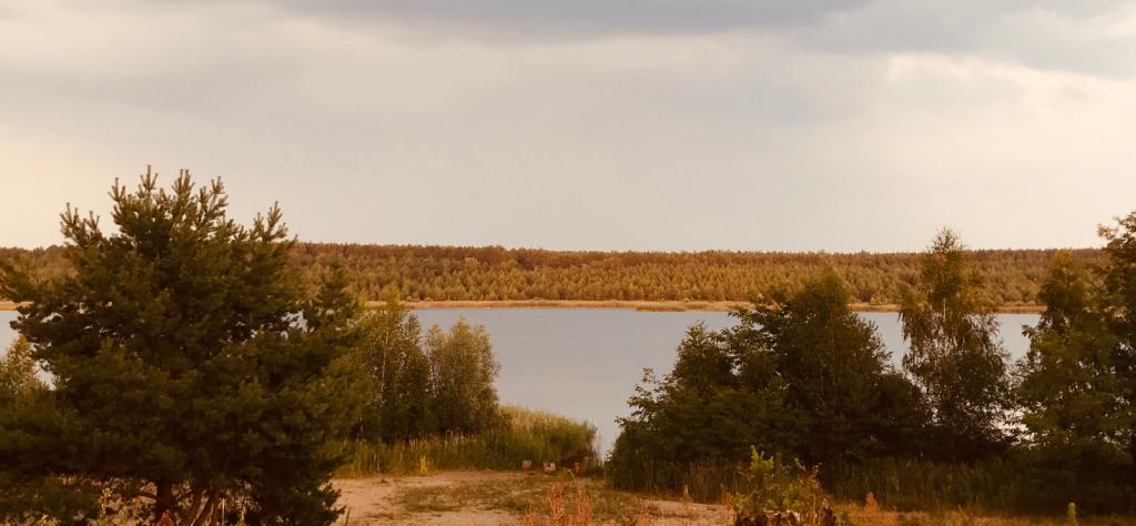 Schönfelder See im Spreewald